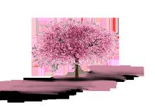 عطرهای فصل بهار