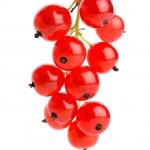 عطرهای دارای نت توت قرمز , عطرهایی با بوی توت قرمز , Perfumes with Red Currant Note