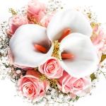 عطرهای دارای نت نت های گلدار , عطرهایی با بوی نت های گلدار , Perfumes with Floral Notes Note