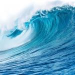عطرهای دارای نت آب دریا , عطرهایی با بوی آب دریا , Perfumes with Sea Water Note