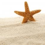 نمایش عطرهای دارای شن - Sand