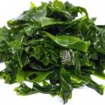 عطرهای دارای نت جلبک دریایی , عطرهایی با بوی جلبک دریایی , Perfumes with Seaweed Note
