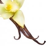 عکس عطر اورجینال با بوی وانیلی