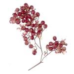 عطرهای دارای نت درخت فلفل , عطرهایی با بوی درخت فلفل , Perfumes with Peppertree Note