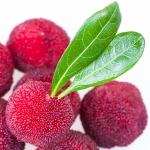 عطرهای دارای نت اربوتا (Madrona، درخت نربري) , عطرهایی با بوی اربوتا (Madrona، درخت نربري) , Perfumes with Arbutus (Madrona, Bearberry tree) Note