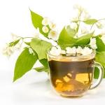 عطرهای دارای نت چای یاسمن , عطرهایی با بوی چای یاسمن , Perfumes with Jasmine Tea Note