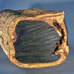 عطرهای دارای نت چوب اینوبی , عطرهایی با بوی چوب اینوبی , Perfumes with Enoby Wood Note