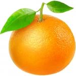 نمایش عطرهای دارای پرتقال ماندارین - Mandarin Orange