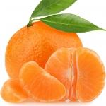 عکس عطر اورجینال با بوی پیوند نارنگی با پرتقال