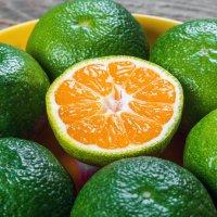 نمایش عطرهای دارای نارنگی سبز - Green mandarin