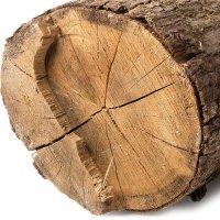 عکس عطر اورجینال با بوی چوب سفید