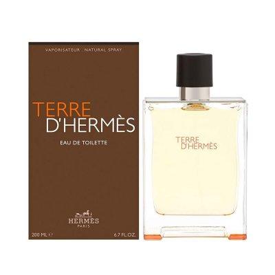 عکس دوم عطر تق هرمس تویلت 100 میل - تصویر دوم عطر Terre De Hermes EDT 200ML 100ml